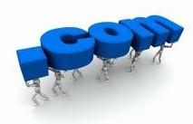 domena dla bloga